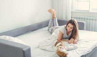Qué tener en cuenta a la hora de comprar un sofá cama